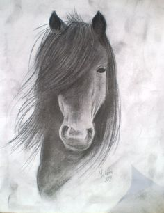 Horse Drawings, Horses Drawings, Drawings Horses, Charcoal Drawings