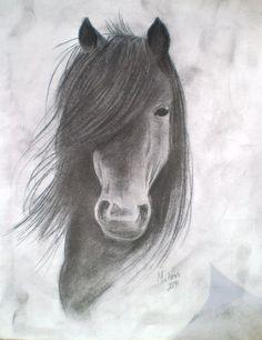Horse Drawings, Horses Drawings, Drawings Horses, Charcoal Drawings