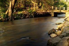 River. by Krzysztof Szwab on 500px