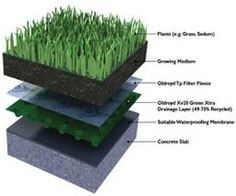 chicago green roofs google search sustainable living pinterest toits verts toiture et. Black Bedroom Furniture Sets. Home Design Ideas