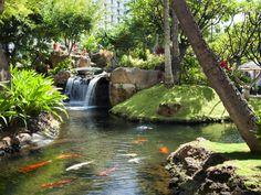 Westin Maui Resort & Spa  in Kaanapali , Maui