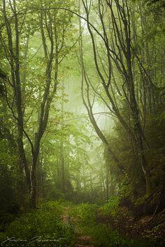 Vercors Valley, France (by Xavier Jamonet)