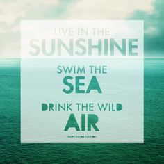 Muurdecoratie Live in the sunshine, swim in the sea, drink the wild air | via ohsolovelyblog.com