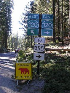 Yosemite--Crossroads to the Three Park Exits and Speeding Kills Bears Sign