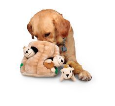 Kyjen PP01058 Hide-a-Squirrel Pet Toy, Jumbo: Amazon.com: Pet Supplies