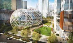 Amazon Plans Futuristic Glass Sphere Building for New Seattle Headquarters