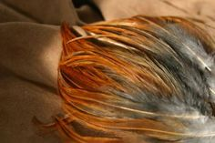 Natural Chicken Feathers by ThisThatandtheOther for $10.00 #zibbet #rustic #funkyjunk