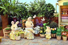 Sylvanian Families - Flower shop | by Sylvanako Sylvanian Families, Calico Critters Families, Family Flowers, Rabbit Baby, Family Set, Bunny Toys, Family Costumes, Rement, Dollhouse Miniatures