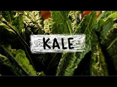 Kale - Superfoods, Episode 5