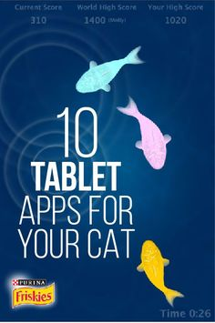 10 Apps For Your Cat
