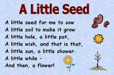 poems - seeds and plants - A selection of themed poems on the topic of seeds, growth, plants and planting.Themed poems - seeds and plants - A selection of themed poems on the topic of seeds, growth, plants and planting. Preschool Poems, Preschool Garden, Kids Poems, Kindergarten Science, Preschool Activities, Easy Poems For Kids, Nature Poems For Kids, Preschool Spring Songs, Spring Poems For Kids