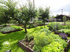 Zeleninová zahrada | Atelier Flera
