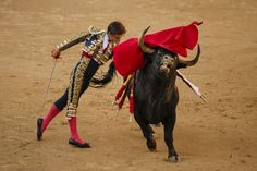 "The cruel ""sport"" of bullfighting. Matador Costume, European Travel, European Trips, Tin Shed, Bull Cow, Man Vs, Travel Posters, Rodeo, Art Images"