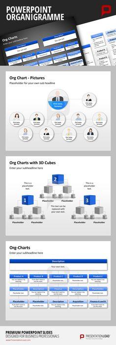 Sample Org Chart Sample Organization Chart Organizational