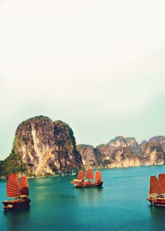 between blue and green, marine