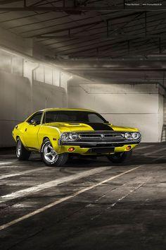 Dodge Challenger - 1971 Dodge Srt, Dodge Challenger, Muscle Magazine, Mercury Marauder, Amc Javelin, Camaro Z, Chest Muscles, Benz S Class, Mustang Cars