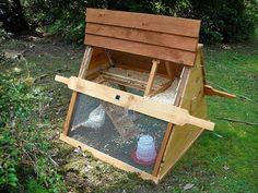Small DIY Chicken Coop