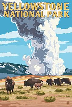 Yellowstone National Park - Old Faithful Geyser and Bison Herd (12x18 Art Print Wall Decor Travel Poster)