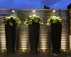 5 September Gardening tips from Laetitia Maklouf - this month invest in some John Cullen outdoor lighting to extend your time in the garden Garden Garden design Garden ideas Garden landscaping Garden lighting Backyard Lighting, Outdoor Lighting, Outdoor Landscaping, Outdoor Gardens, Residential Landscaping, Lighting Uk, Lighting Ideas, Landscape Lighting Design, Exterior Lighting