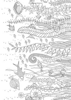 Lost Ocean An Inky Adventure And Coloring Book Johanna