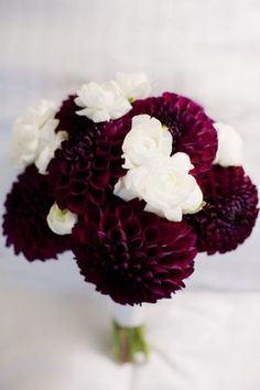 Burgandy and white centerpieces bing images burgundy and creme bouquet idea deep red dahlias with white flowers would love if we could do lighter pink dahlias mightylinksfo