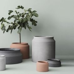 Miluccia x Made in Design – Miluccia | Magazine d'inspiration décoration et design