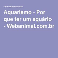 Aquarismo - Por que ter um aquário - Webanimal.com.br