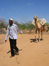 Camel Book Drive  Donate To Kenya's Mobile Library, Helping To Bring Books Where They Have Never Been Before.