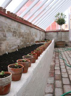 Skal afgjort have et muret fundament til orangeriet! Greenhouse Shed, Greenhouse Gardening, Farm Gardens, Outdoor Gardens, Indoor Garden, Home And Garden, Wooden Greenhouses, Cold Frame, Glass House
