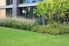Front Garden Landscape, Sun Garden, Shade Garden, Dream Garden, Modern Landscaping, Garden Landscaping, Backyard Garden Design, Small Gardens, Landscape Architecture