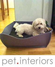 Letto per cani BOWL in feltro con cuscino lattice sano