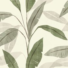 A charismatic Leaf Effect Wallpaper in Cream and Green from the Rasch Denzo Wallpaper Collection. Available at Go Wallpaper UK.
