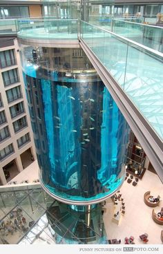 Elevator surrounded by giant aquarium with fish in a shopping mall.