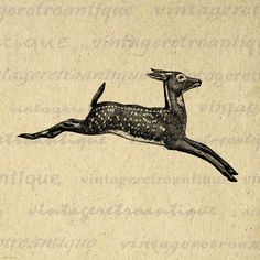 Leaping Deer Digital Graphic Deer Digital Image Download