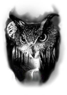 Owl Tattoo Drawings, Tattoo Sketches, Tattoo Owl, Owl Tattoo Design, Tattoo Designs, Tattoo Ideas, Unique Tattoos, Beautiful Tattoos, Beautiful Artwork
