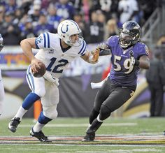 Dannell Ellerbe chases Colts QB Andrew Luck out of the pocket.