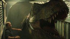 T Rex Jurassic Park, Jurassic Park World, Jurassic World Fallen Kingdom, Falling Kingdoms, Dinosaur Art, Spider, Characters, War, Instagram
