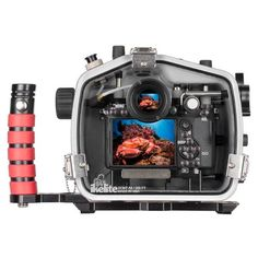 200DL Underwater Housing for Sony Alpha A7 III, A7R III, A9 Mirrorless – Ikelite Camera Photography, Underwater Photography, Night Photography, Sony Camera Lenses, Camera Frame, Off Camera Flash, Seal Design, Best Camera, Taking Pictures