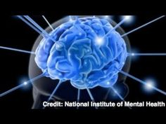 Senior Brain Health - Study Suggests Physical Exercise Best for Brain Health.