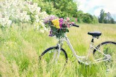 Bicicleta, Prado, Flores, Grama, Moto, Primavera, Verde
