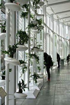 BBG Spring 2014 Vertical Garden Exhibit