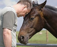 Horse Power: Equine-Assisted Therapy Retreats Equine Assisted Therapy Learn about #HorseHealth #HorseColic www.loveyour.horse