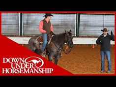 Sidepassing, Shoulder In/Shoulder Out, & the Cloverleaf Exercise~Clinton Anderson: Intermediate Testing, Riding Part 2 - Downunder Horsem...
