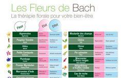 Soignez tous les maux grâce aux fleurs de Bach Gaia, Periodic Table, Massage, How To Plan, Health, Feng Shui, Physique, Perfume, Wellness