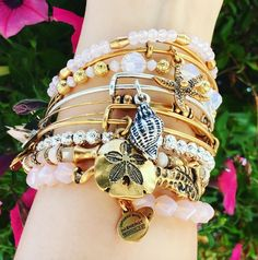 ALEX AND ANI Summer 2016 Collection | ALEX AND ANI Deep Sea Collection | Sand Dollar Charm Bangle | Conch Shell Charm Bangle | Starfish Charm bangle | Seahorse wrap