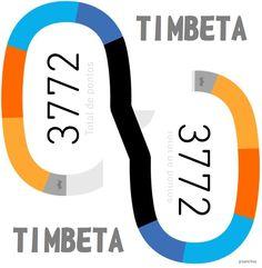 TIMBETA-pontuação
