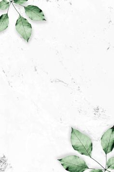 Foliage pattern on marble textured background Wallpaper Rose, Flower Background Wallpaper, Plant Background, Plant Wallpaper, Framed Wallpaper, Green Wallpaper, Pastel Wallpaper, Textured Wallpaper, Textured Background