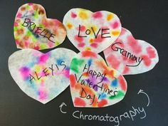 Make Chromatography Valentines - Experiment Exchange