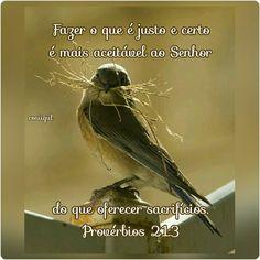 #Provérbios #Sabedoria #Retidão #Verdade #Obediência #DeusFiel #rosiigiil