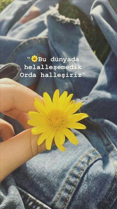 Grunge Photography, Tumblr Photography, Flower Tattoo Drawings, Mickey Mouse Wallpaper, Tumblr Art, Script Writing, Videos Funny, Cool Words, Instagram Story